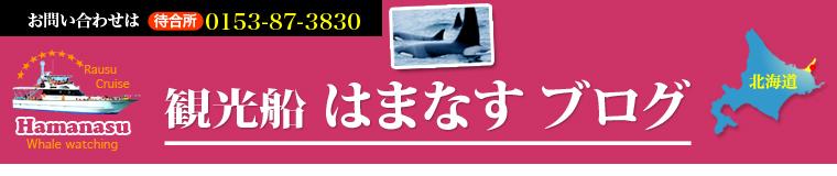 ホエールウォッチング 北海道 知床・羅臼観光船「はまなす」ブログ